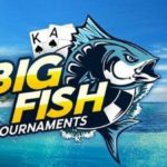 Big Fish tournament series at 888Poker